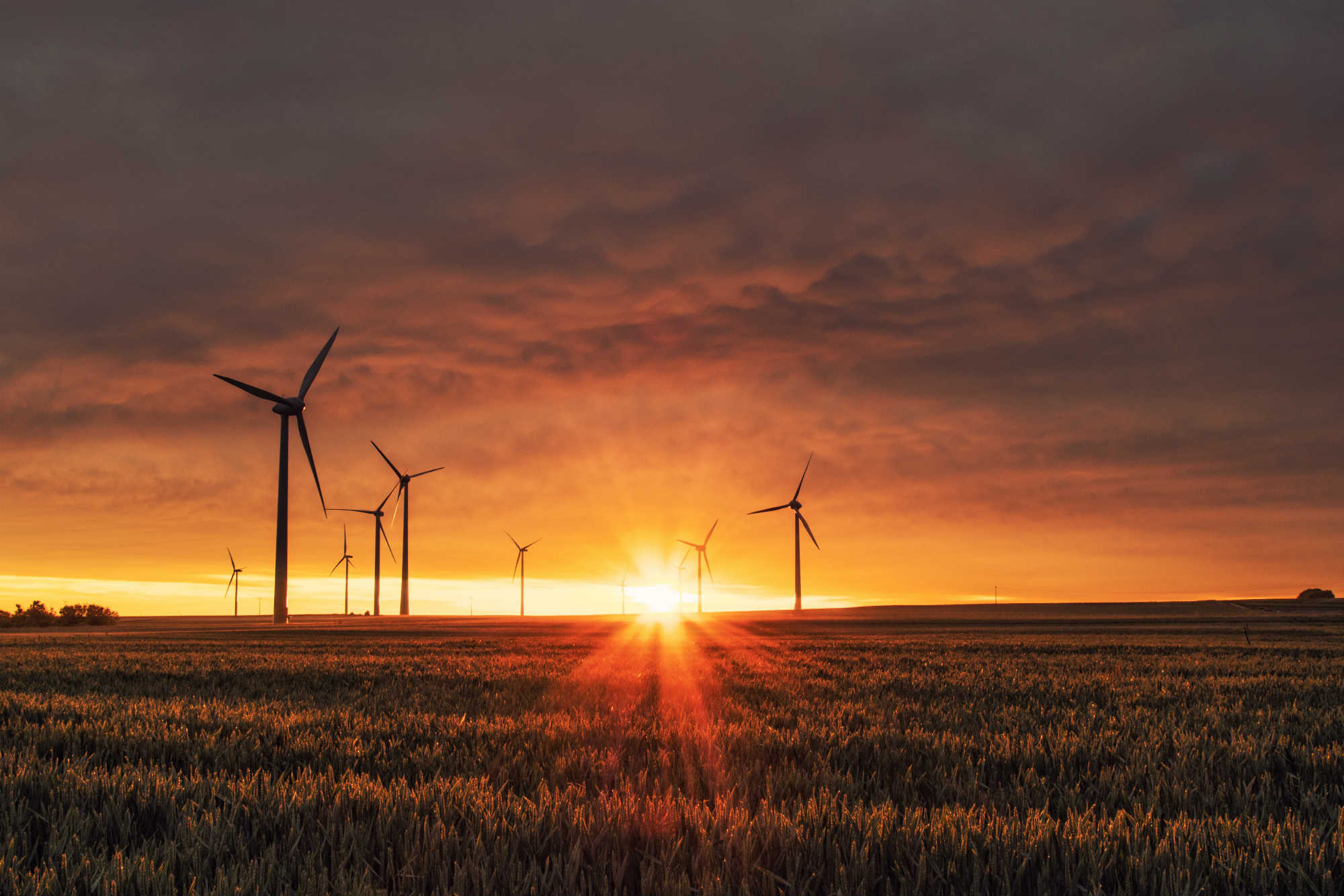 Wind power to become Brazil's 2nd most used energy development by 2019