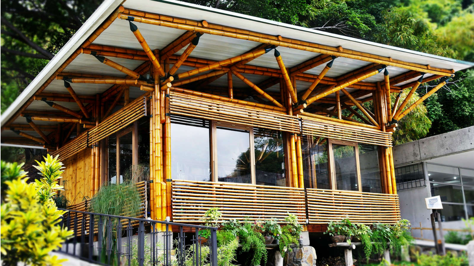 Are you ready for a future with printed cars and bamboo houses?